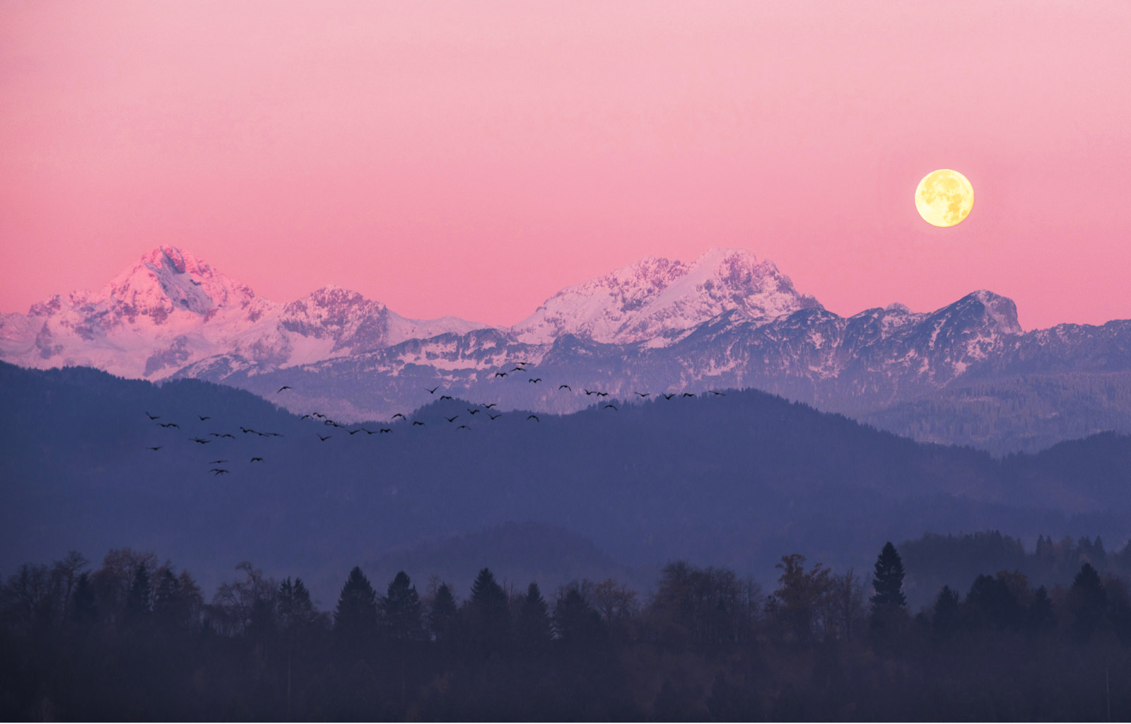 How to Celebrate the April Pink Moon