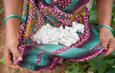 Why Cotton is THE Thing You Should Always Buy Organic