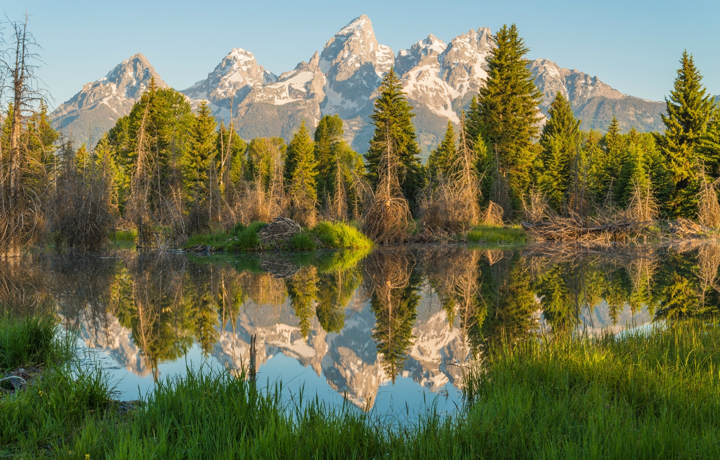 Grand Teton National Park in Wyoming Header Black Environmentalists