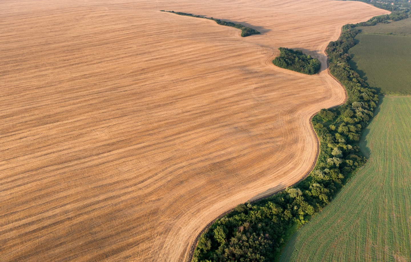 Aerial Shot of Cultivated Agriculture Fields Header